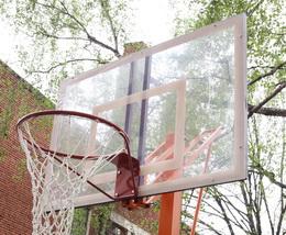 Баскетбол 12