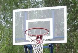 Баскетбол 10